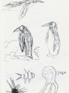 Sea Life Sketches 1