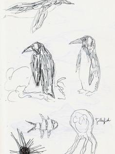 Sea Life Sketches 1