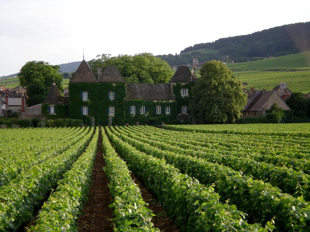 """Route de """"Grand Crus"""", Borgonha, França"""