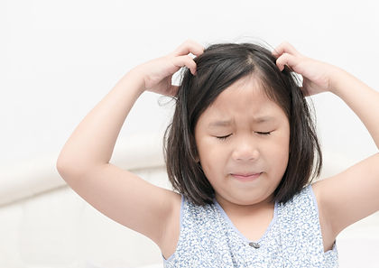 Head lice that can be prevent by MosQuit