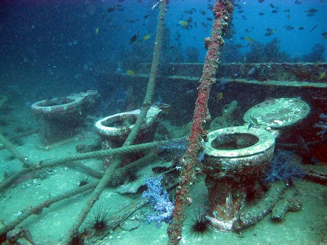 Toilettes du King Cruiser, plongée sur épave, Koh Phi Phi, Thaïlande