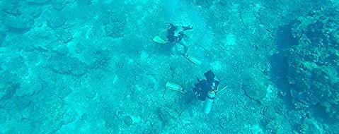 Formation à la plongée profonde | Koh Phi Phi, Thailand