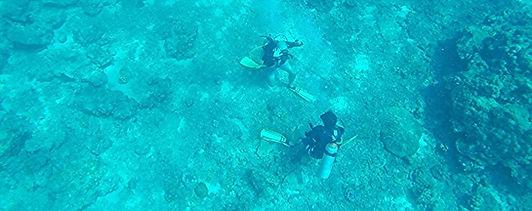 Formation à la Spécialité plongée profonde PADI, Koh Phi Phi