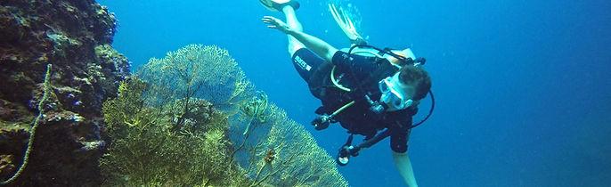 Formation d'Advanced Open Water Diver, le deuxième niveau de plongée PADI; Koh Phi Phi