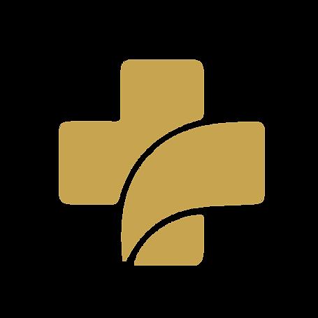 logo v-21.png