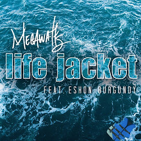 life_jacket_cover_art(10x10).jpg