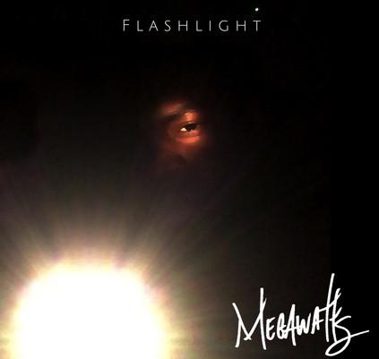 flashlight cover