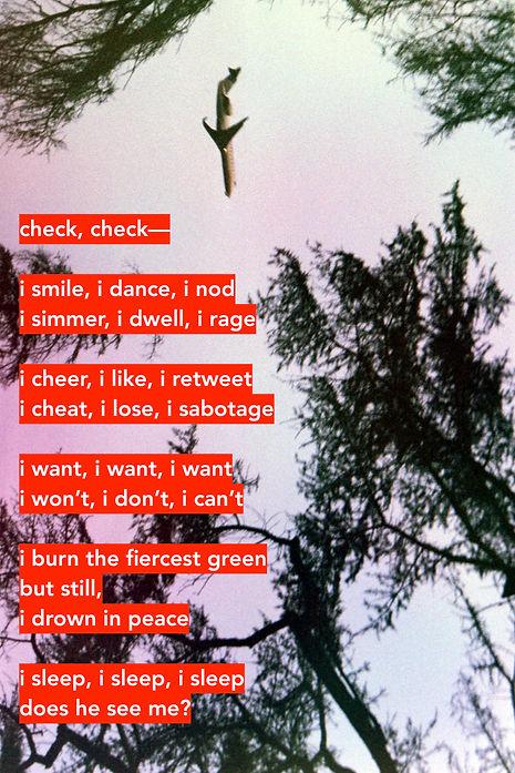Check, check, poem.jpg