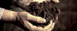 Melbourne Soil Screening
