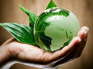ambiente-news-progest.jpg