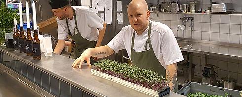 Banner-chef-1000x400.jpg