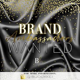 Brand Ambassadors.png