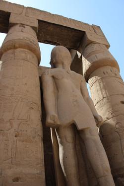 Ramses in Motion