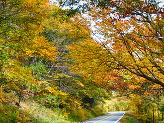 Fall in Blue Ridge Mountains!