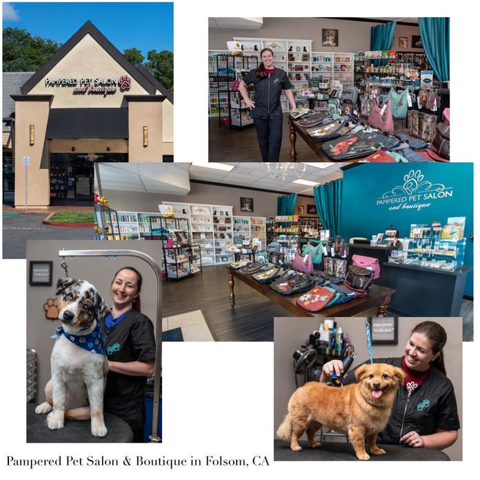 marketing-images-for-a-pet-salon.jpg