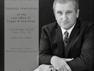 Attorney Portrait   Modern & Elegant