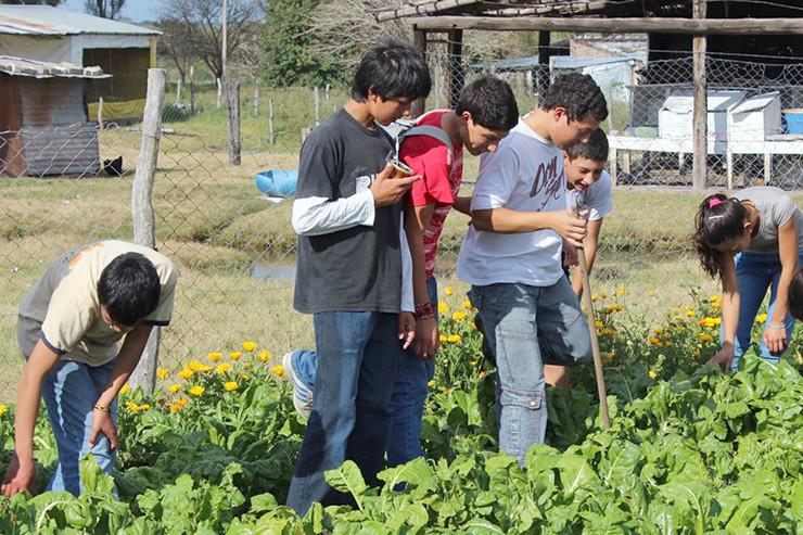 Schulgarten in Misiones.