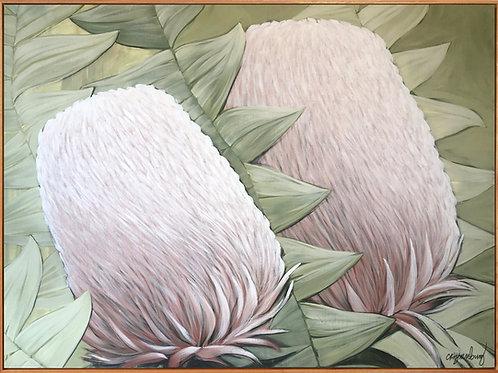 Twin Banksia