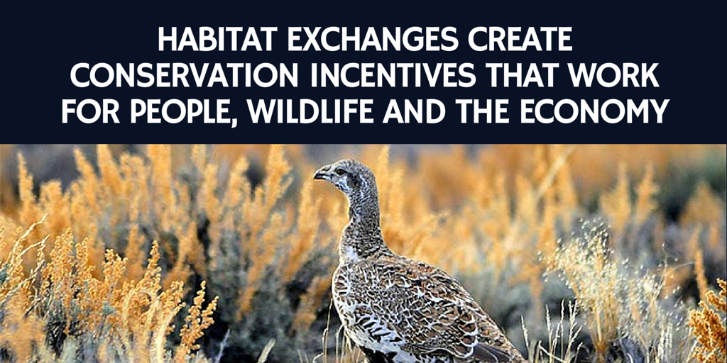 Habitat Exchange