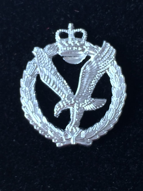 Army Air Corps (AAC) lapel pin badge