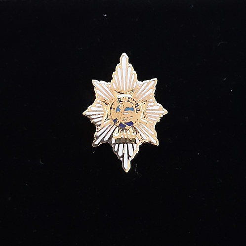 Worcestershire & Sherwood Forresters  lapel pin badge
