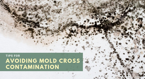 Tips for Avoiding Mold Cross Contamination