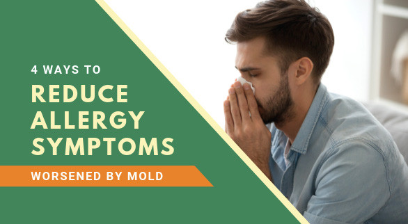 4 Ways to Reduce Allergy Symptoms Worsened by Mold