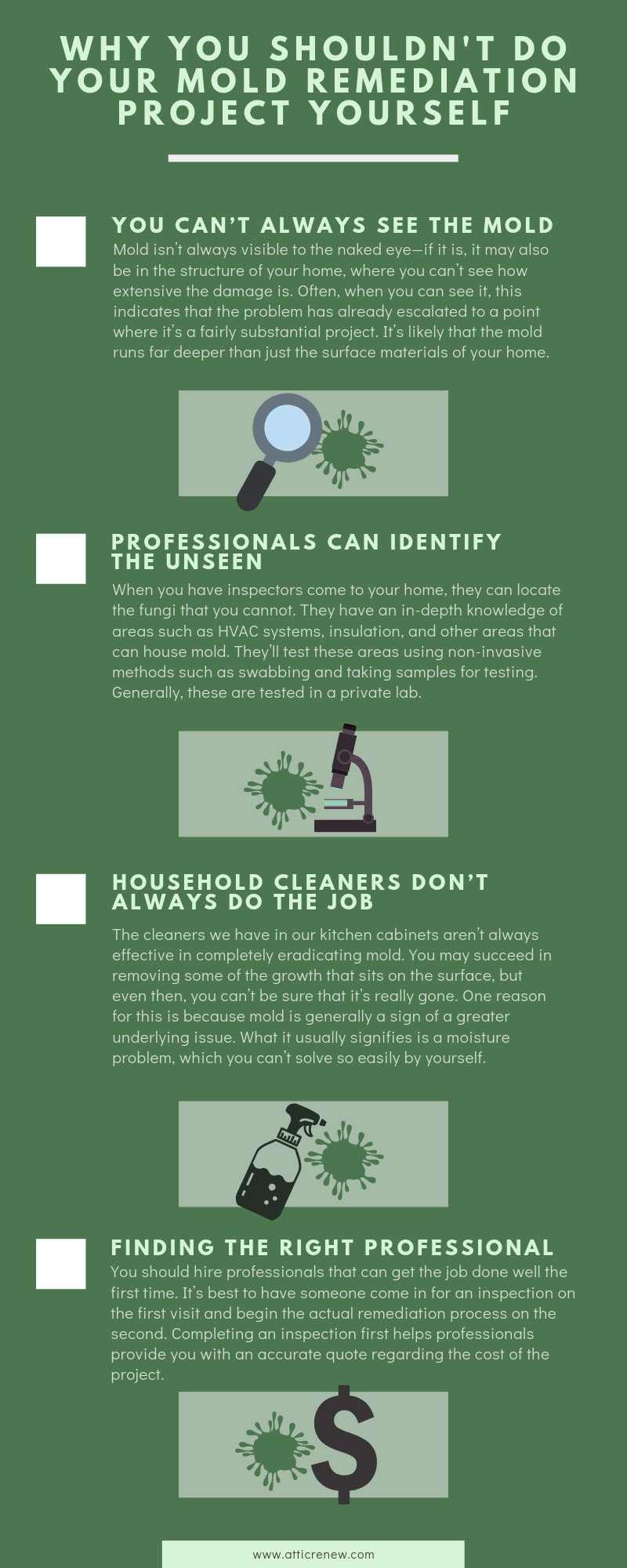 Why You Shouldn't Do Your Mold Remediation Project Yourself infographic