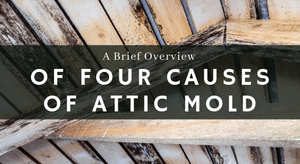 A Brief Overview of 4 Causes of Attic Mold