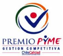 Premio PYME 2009