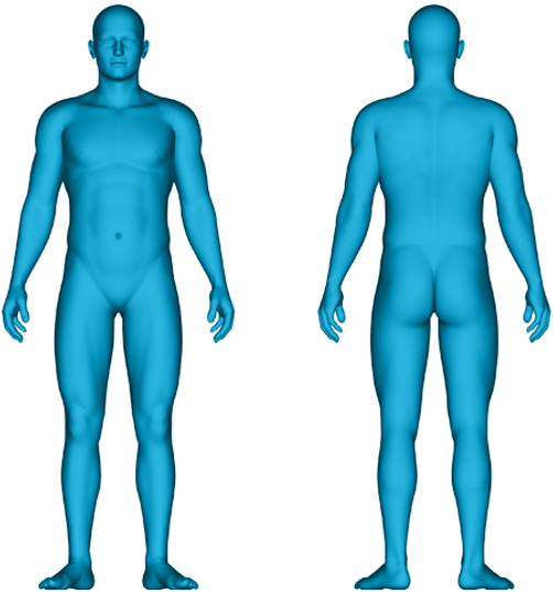 interactiveBody_male.png