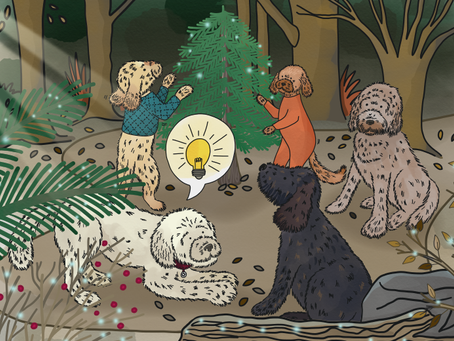 Story 20: Phoebe chooses the Christmas tree