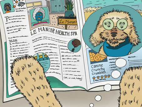Story 22: The doodles have a spa day