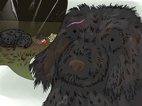 Story 16: A Doodle called Hugo needs help
