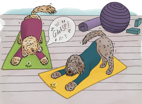 Story 14: DeDe and Lily-Poo do yoga