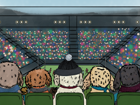 Story 19: Harley takes the Doodles to a Rugby match