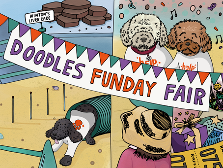 Story 23: The doodles arrange a charity fun day