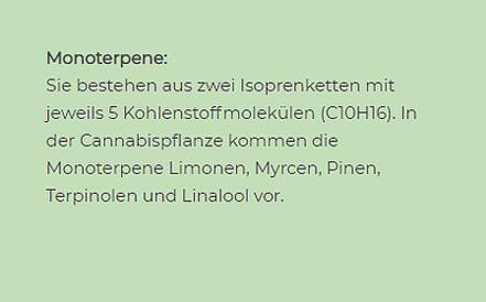 MONOTERPENE 3_PNG.webp