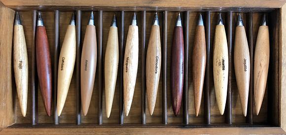 Estojo com 12 canetas ? tampa acr�lico mod. HC (Pedro Petry)