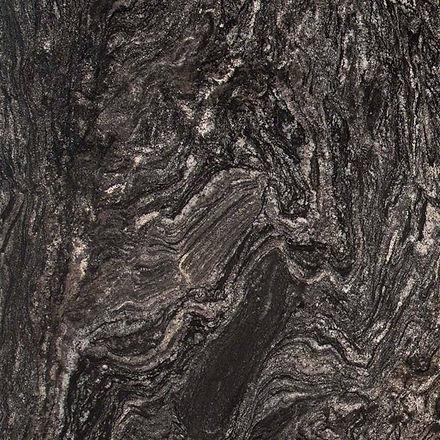 15. Black Forest.jpg