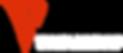 Vivace Leadership Logo