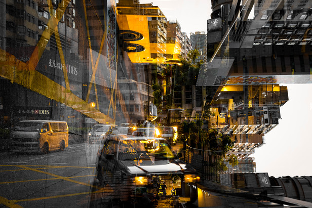 Yellow rhapsody.jpg