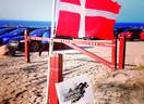 Dänischer Frühling, immer wieder und wieder …..