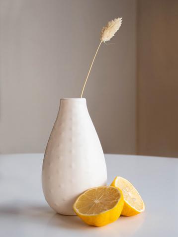 Vase and Lemons