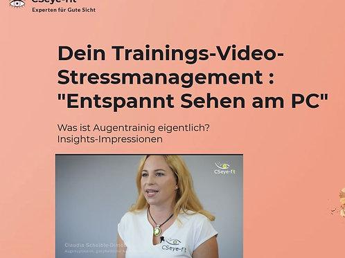 Basic-Trainingvideo-Einsteiger