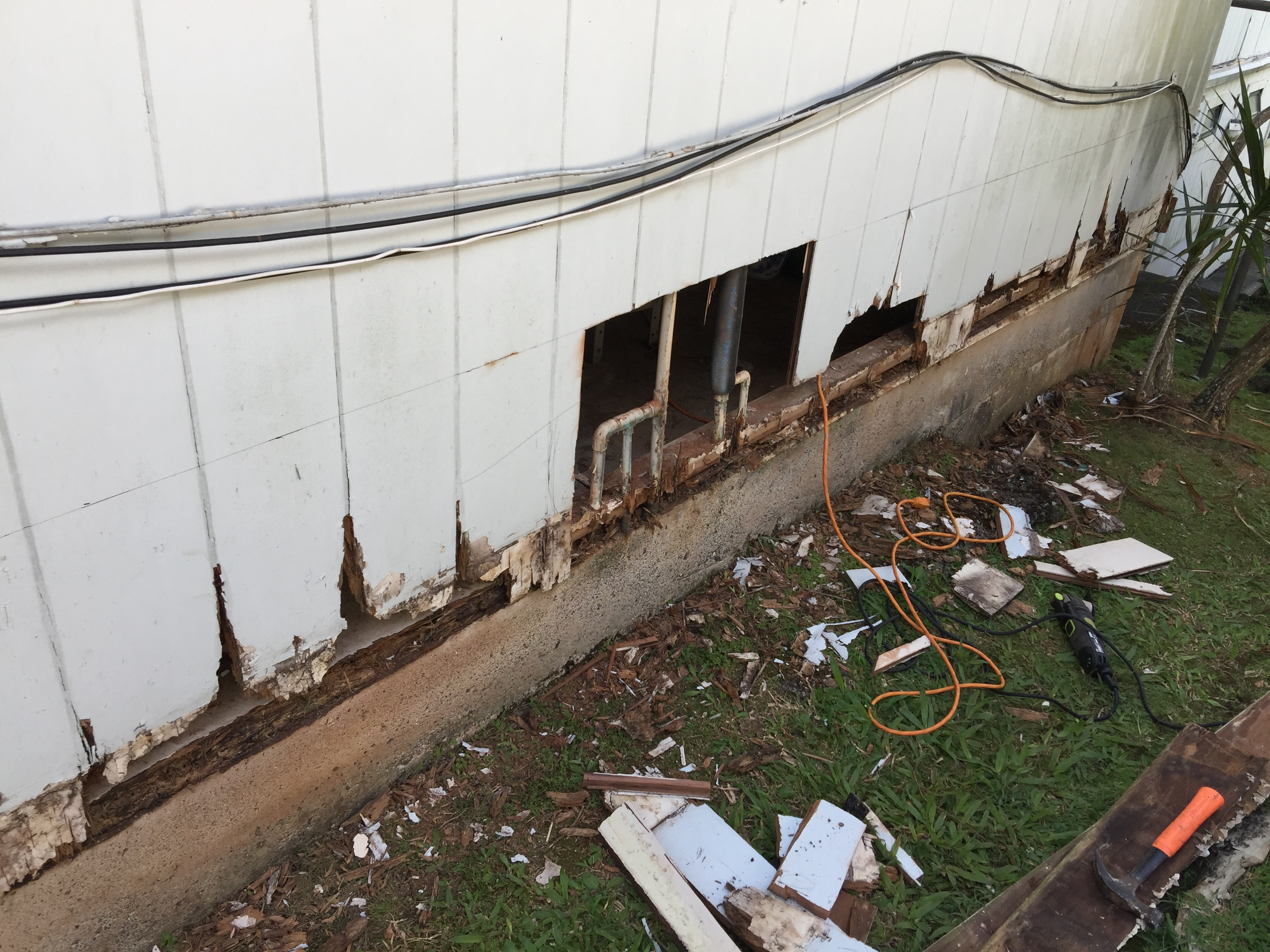 Termite Damage Repair