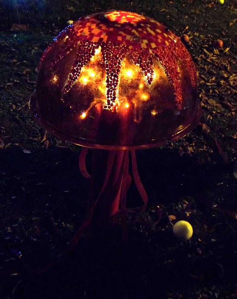 meduse rouge