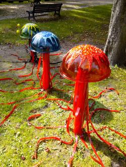 3 meduses