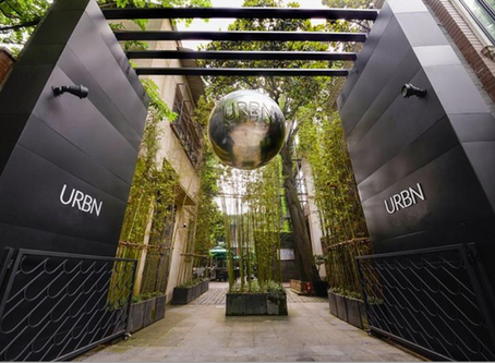 The Two Most Sustainable Hotels in Shanghai上海最环保的两家酒店