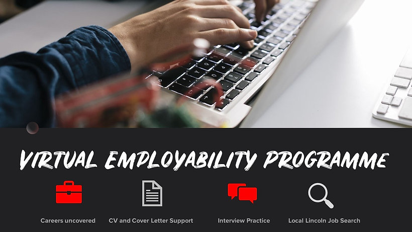 Virtual Employability header.jpg